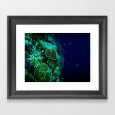 Reefer Framed Art Print