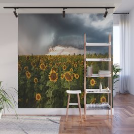 Don't Look Back - Sunflowers Face Away From Storm in Kansas Wall Mural