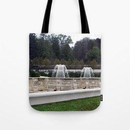 Longwood Gardens Autumn Series 418 Tote Bag