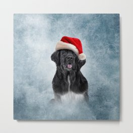 Drawing, illustration Dog Newfoundland in red hat of Santa Claus Metal Print