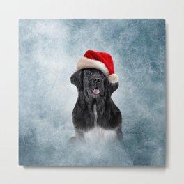 Drawing, illustration Dog Newfoundland in red hat of Santa Claus Metal Print