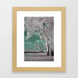 Alien Lanscape Framed Art Print