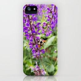 Honey Bee on Lavender iPhone Case