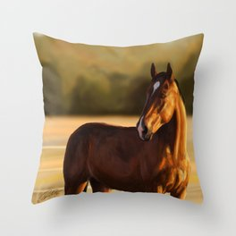 Looking of to the sunset Throw Pillow