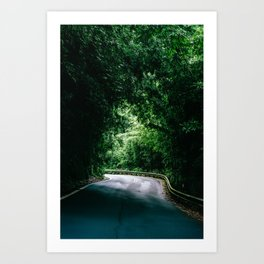 Driving the Hana Highway Art Print