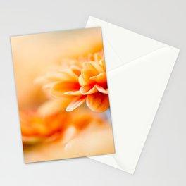 In Orange No 2 Stationery Cards