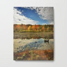 Beaver Pond in Fall - 2014 Metal Print