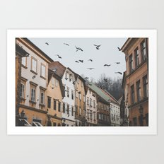 Ljubljana, Slovenia I Art Print
