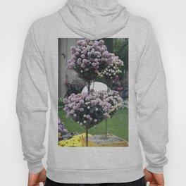 Longwood Gardens Autumn Series 285 Hoody