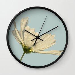 white cosmea Wall Clock