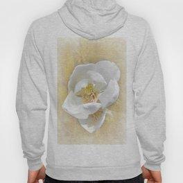 Sweet Southern Magnolia Hoody