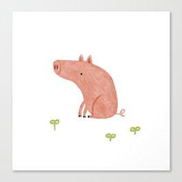 Sitting Pig Canvas Print