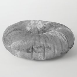 Silver Landscape At Lake Bohinj Floor Pillow