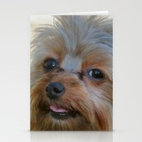 yorkie Stationery Cards featuring Little Yorkie by IowaShots