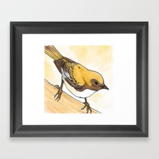 Yellow Blue Warbler Framed Art Print