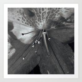 Grey Sparkle Art Print