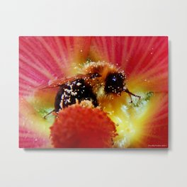 The Bee in the Flower Metal Print