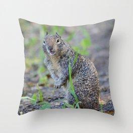 ground squirrel greeting Throw Pillow