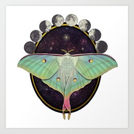 Indian moon Moth Art Print