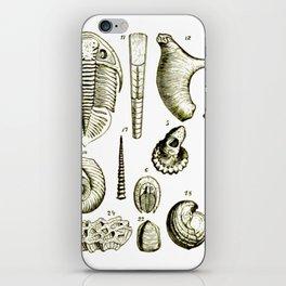Fossil Set iPhone Skin