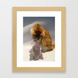 Slurp Framed Art Print