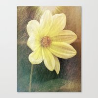 dahlia Canvas Prints featuring Dahlia by Lynn Bolt