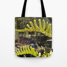 Sweet Fern Tote Bag