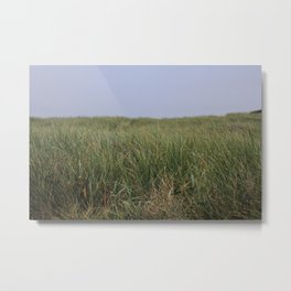 Dog's Eye View Metal Print
