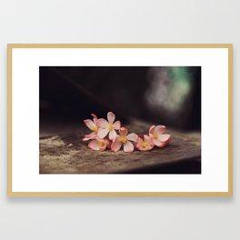 Begonia on spade Framed Art Print