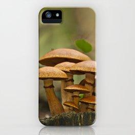 Gimnopilus mushrooms family iPhone Case