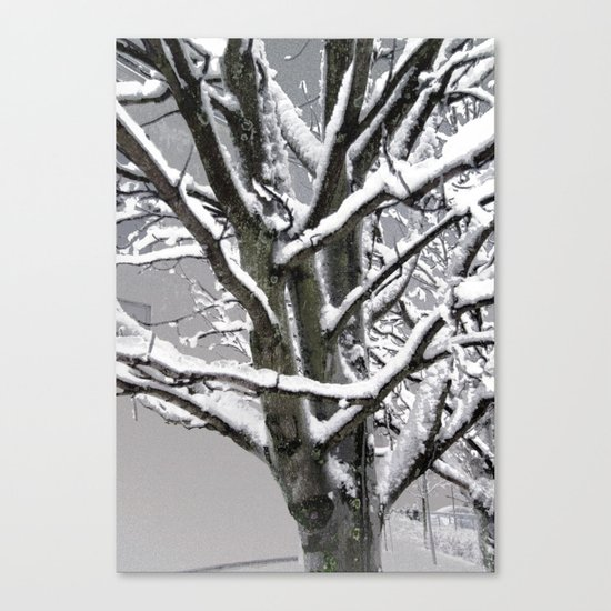 Every Tree a Sculpture Canvas Print