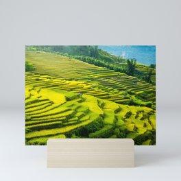 Viet Nam  Art Print, Sapa Rice Terrace, Paddy field, Wall Art Decor, Travel Poster, Fine Art Print Shop Mini Art Print