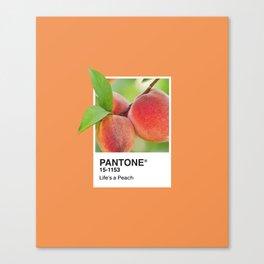 PANTONE SERIES – PEACH Canvas Print