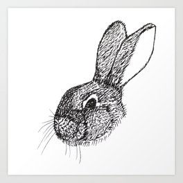 Fluffy the Rabbit Illustration Art Print