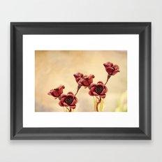 Ruby Red Framed Art Print