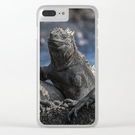 Iguanas relaxing sunbathing on rock at beach Clear iPhone Case
