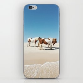 Summer Shore Horses iPhone Skin