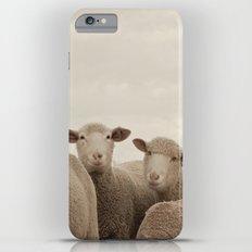Smiling Sheep  iPhone 6s Plus Slim Case