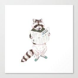 Tribune Raccoon Canvas Print