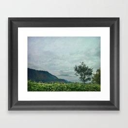 Farm House Framed Art Print