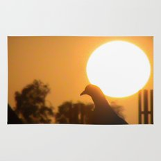 Pigeon Eclipse Rug
