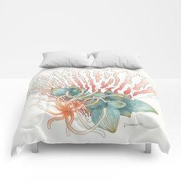 Fan Reef Comforters