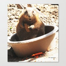 A Bowl Of Groundhog And Veggies Canvas Print