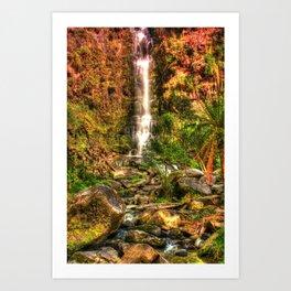 Erskin Falls, VIC Art Print