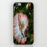 degas iPhone & iPod Skins featuring Degas' poppy by Bee in Eden