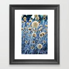 WILD THISTLE Framed Art Print
