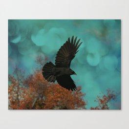 Soaring Crow Canvas Print