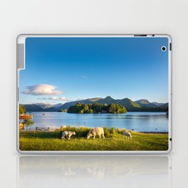 Sheep grazing on the lush shores of Lake Derwentwater, England Laptop & iPad Skin