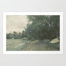 Acacia Bay Art Print