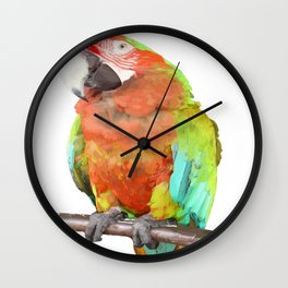 Vector Style Harlequin Macaw On A Perch Wall Clock